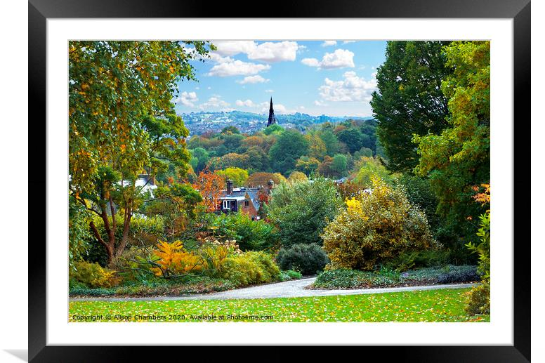Buy Framed Mounted Prints of Autumn Comes To Sheffield  by Alison Chambers