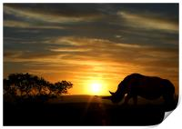 Rhino with a sunset behind, Print