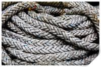 Coiled Rope, Print