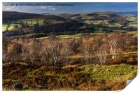 View from Stanage Edge, Print