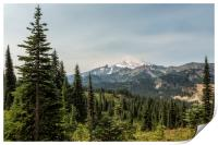 Mt Rainier from Naches Peak Loop, Print