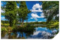 Reflections in Stover Lake., Print