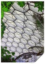 Eden Project Cornwall England, Print