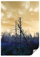 Death of The trees, Print