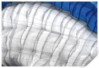 Paraglider Canopy, Print
