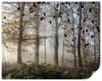 Misty Autumn, Print