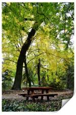 Picnic in the Woods, Print