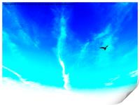 Bird In The Sky- Abstract Photography, Print