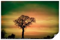 Tree Silhouette against the sky, Print