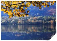 Autumn at Loweswater, Print