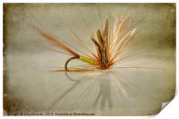 Greenwells Glory Dry Fly, Print