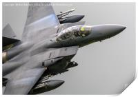 The mighty F15, Print