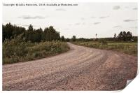 Gravel Road To The Woods, Print