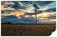 Evening By The Barley Fields, Print