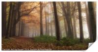 Misty Forest, Print