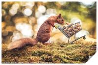 Shopping Red Squirrel, Print