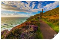 Heather splendour Wheal Coates, Print
