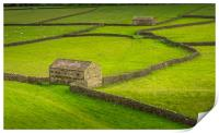 Swaledale Barns and stone walls, Print
