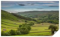 The old barns in Swaledale, Print