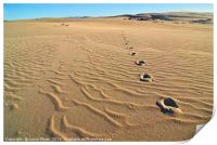 Beautiful sand dunes of the Rancho Guadalupe Dunes, Print