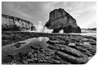 Dramatic view of Shark Fin Cove, Print