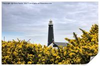 The Old Lighthouse, Dungeness, Print
