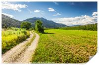 Rural road in Trento among Alps, Print