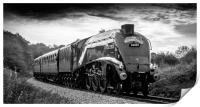 LNER Class A4 4488/60009 Union of South Africa, Print