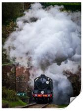 SR S15 Class #847 Exits West Hoathly tunnel, Print