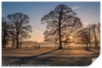 Sunrise and Winter Trees Felbrigg, Print