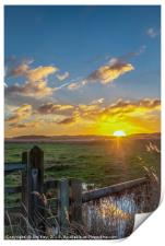 Cley Marshes  Norfolk, Print
