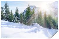 Sun rays through snowy mountains and trees, Print
