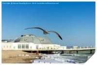 Seagull Heading Towards Worthing Pier, Print