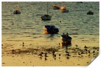 Boats parked on water in the morning sun, Print