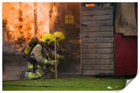 shed fire, Print
