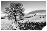 A Winters Day, Print