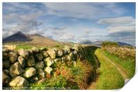 Pathway to the Mourne Mountains, Print