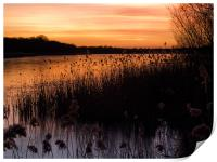 Sunset over Ormesby Little Broad, Print