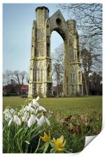 Abbey and snowdrops, Print