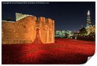 Tower of London Poppies, Print