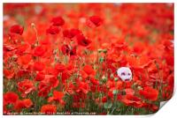 A Mass of Poppies, Print