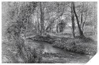 Down By The River BW, Print