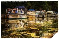 Boats on the Broads 7, Print