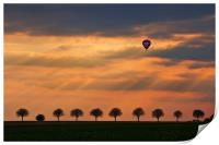Up and Away!, Print