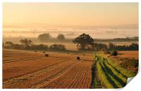 Harvest Dawn in the Vale, Print