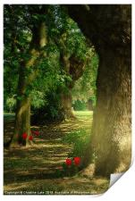 Pathway to Enchantment, Print