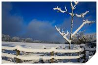 Winters Day, Print