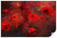 A Chaos of Poppies, Print