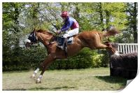 Point to Point horse race, Print