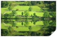 Reflections on Rydal Water, Print